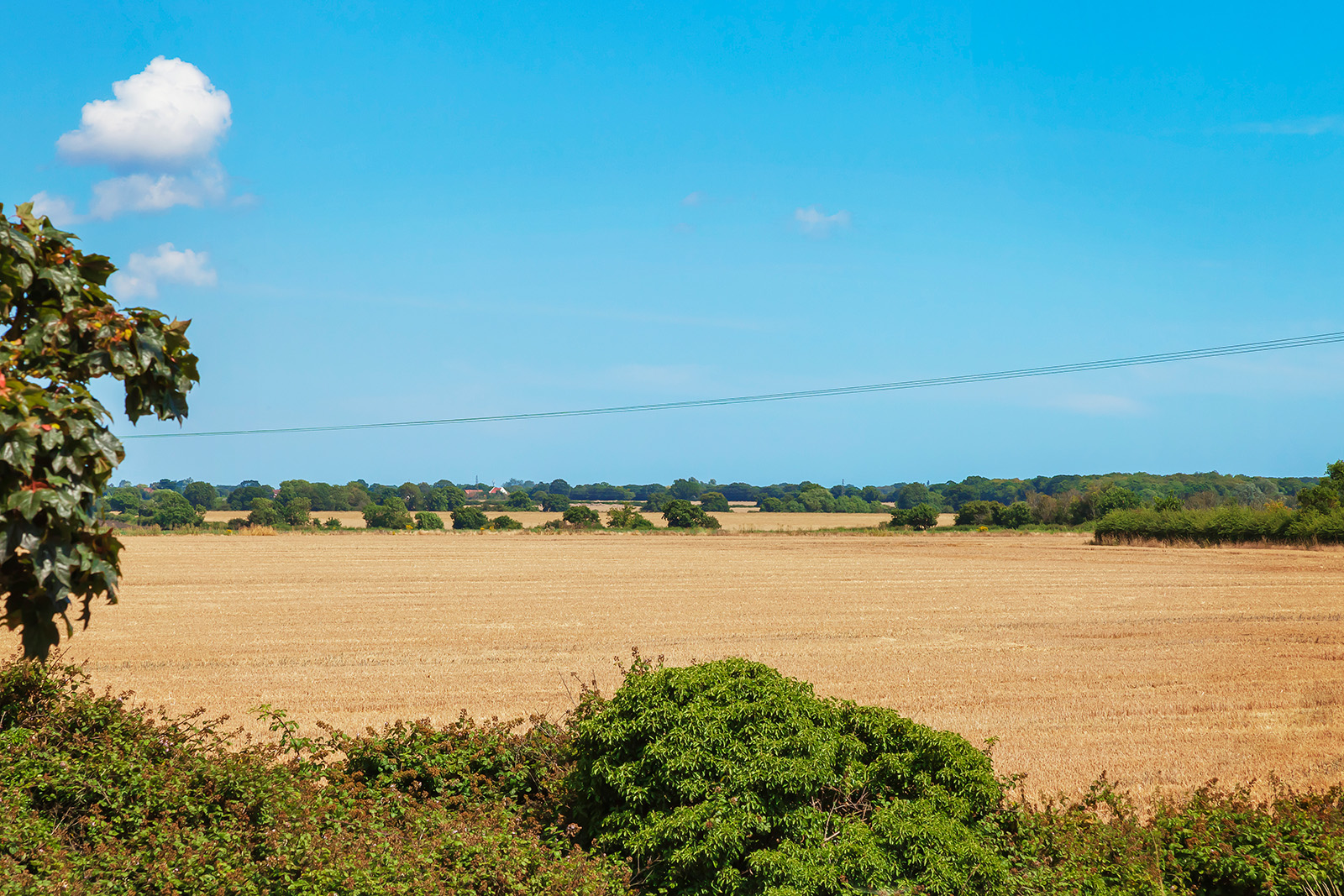 View on fields